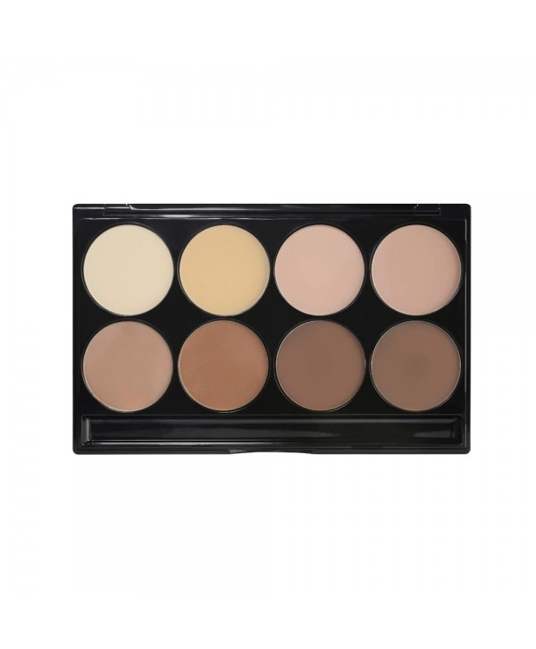 Professional palette compact powders