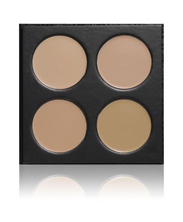 Professional palette creamy foundations